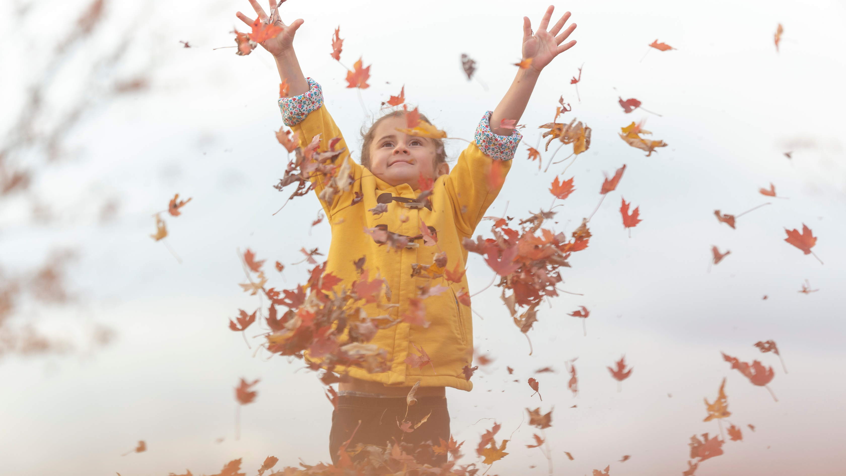 child throwing up leaves in the air